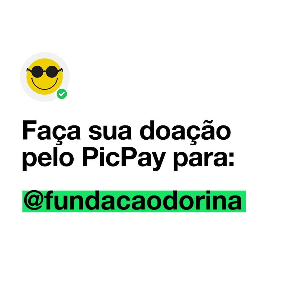 Texto sobre fundo branco: Campanha Agosto verde Faça sua doação pelo Picpay para: @fundacaodorina