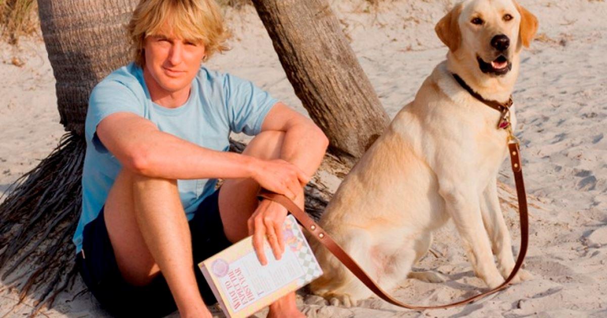 Cena do filme Marley e Eu. Um homem está sentado na areia de uma praia, a frente de um tronco de árvore, com as pernas dobradas e os braços sobre os joelhos, segurando um livro em uma das mãos e, ao mesmo tempo, a coleira de seu cão, que está sentado ao seu lado direito. Ambos olham para frente..